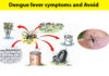 dengue fever avoid