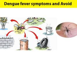 dengue fever avoid